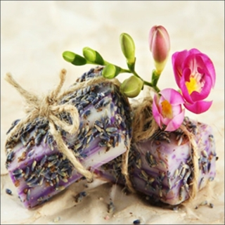 CANVAS LAVANDER SOAP 50x50